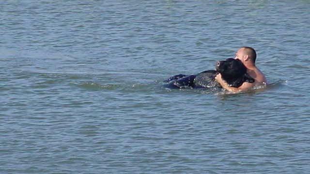 Огромный медведь тонул в озере, а мужчина решился на невероятный поступок